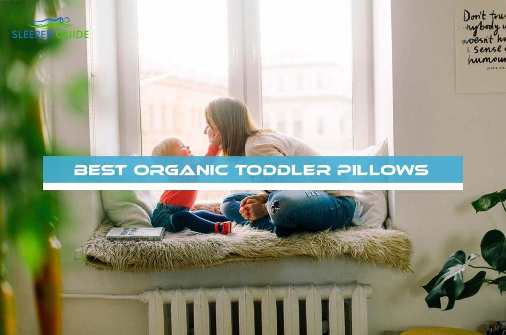 Best Organic Toddler Pillows